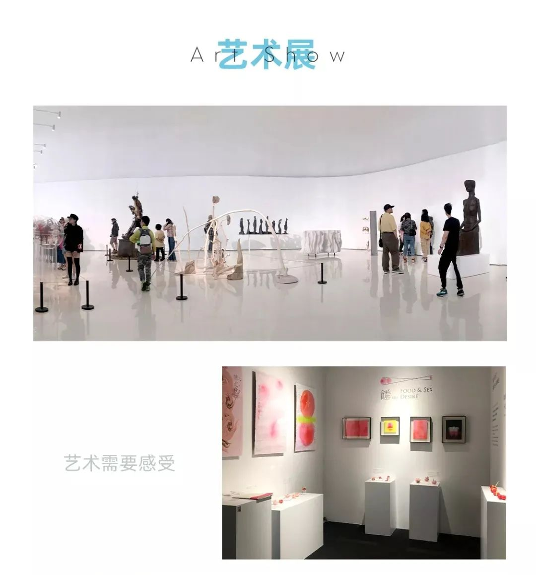 郑州小泽画室,美术高考培训画室