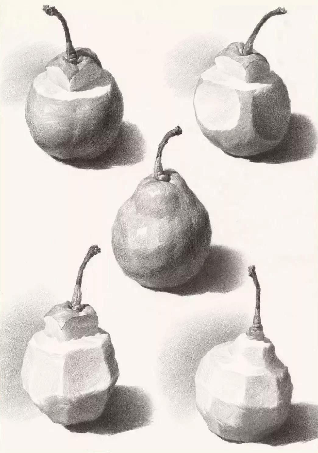 广州画室,素描水果