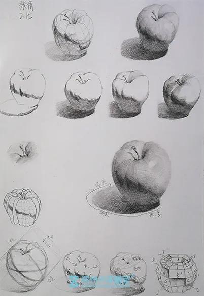 郑州小泽画室,美术高考画室,美术高考培训
